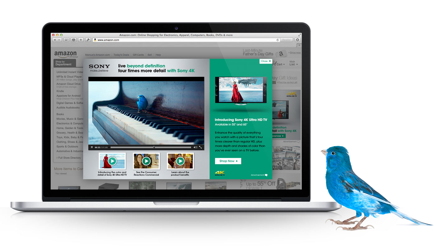 Sony 4K Launch – Marcus Pape | Purposeful Design + Team Leadership